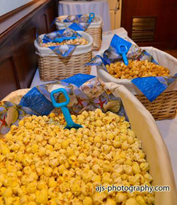 Becca and Tony's Popcorn Bar